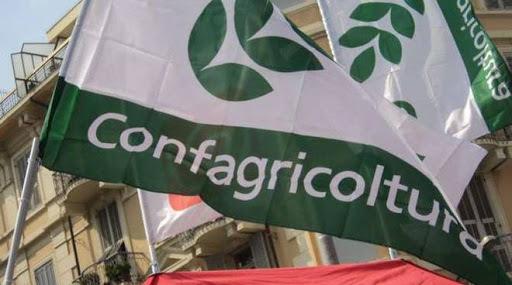 Coronavirus, Confagricoltura: preoccupazione per il comparto agroalimentare ciociaro