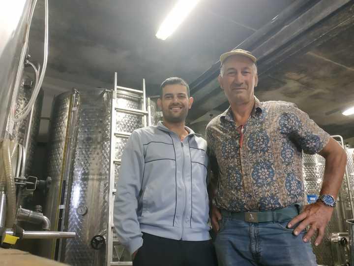Il settore vitivinicolo lancia l'S.O.S. Confagricoltura chiede interventi rapidi