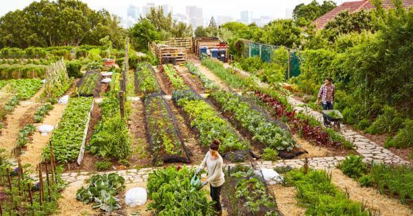 Spostarsi per curare l'orto si può, anche in zona rossa.