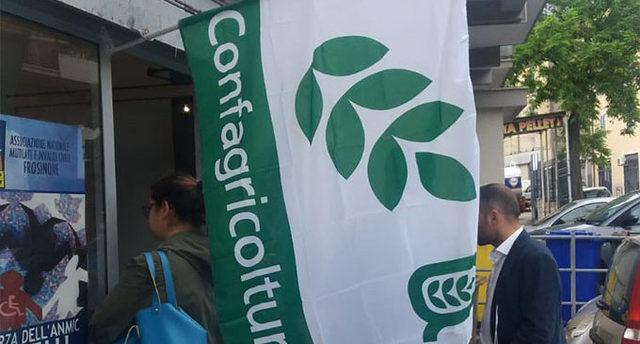 Tagli alla Pac, Confagricoltura Frosinone esprime preoccupazione
