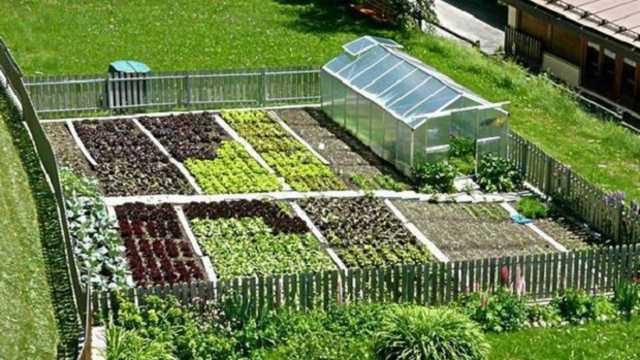 Spostamenti per orti e aree verdi: il Lazio faccia come la Liguria