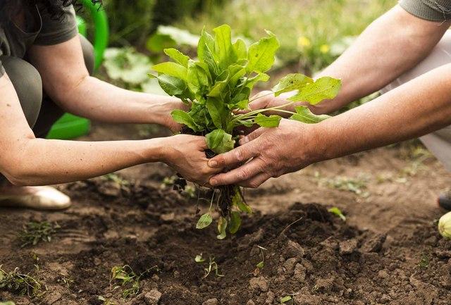 """Fase 2: """"Dalle istituzioni maggiore coraggio nel sostegno al comparto agroalimentare e a quello delle dimore storiche""""."""