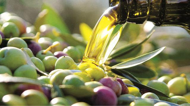 L'olio ciociaro non delude, qualità alta nonostante la piccola flessione nella produzione